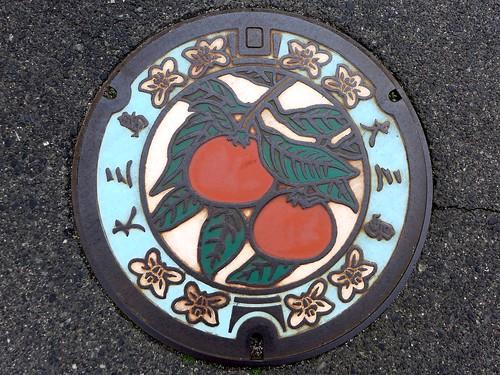 Omishima Ehime, manhole cover (愛媛県大三島町のマンホール)