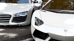 Aventador & R8