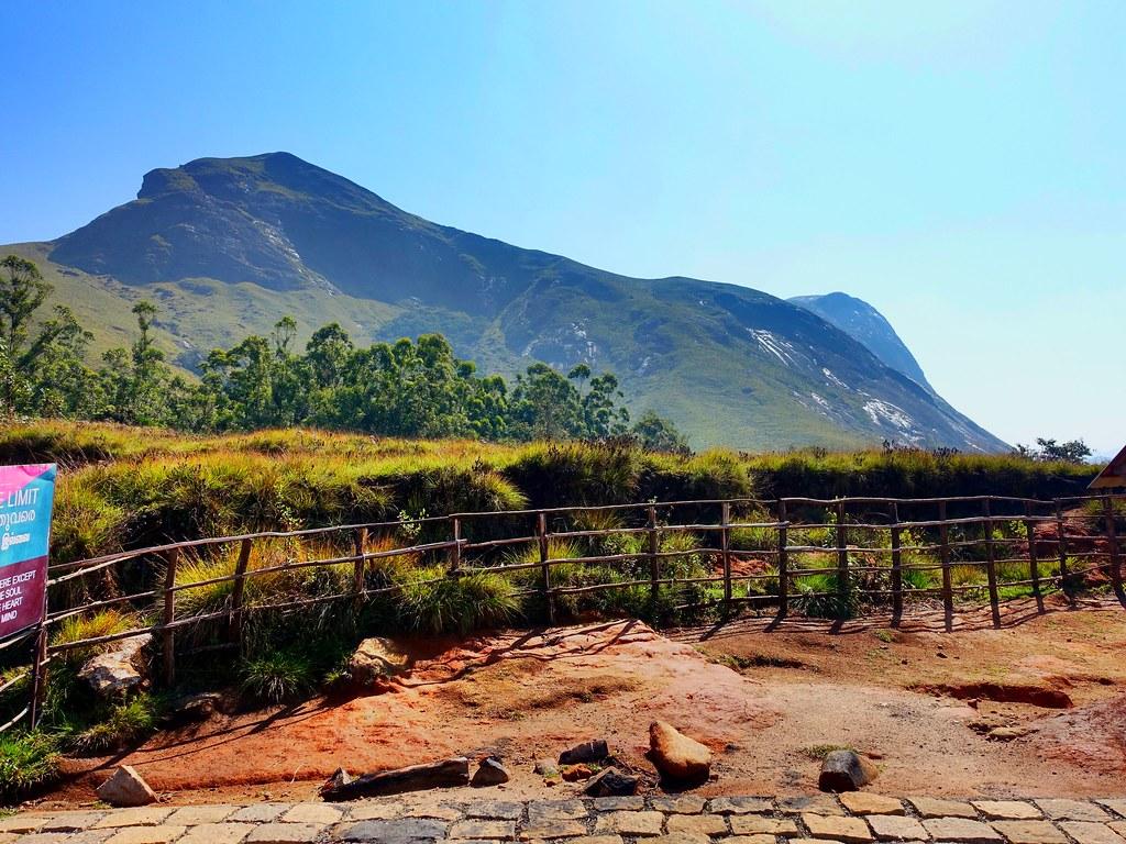 Eravikulam national Park @Munnar