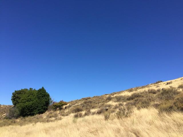 Santa Teresa County Park