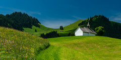Chapelle Saint-Garin (Switzerland)