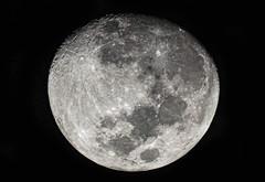 Lua 92%