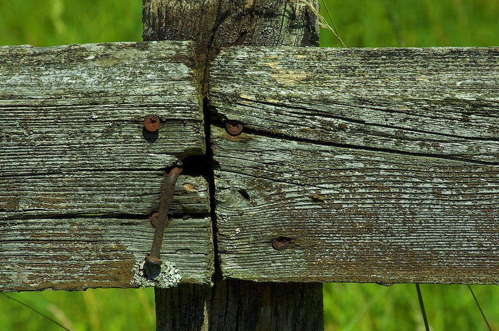 Failed Nail Mysteries