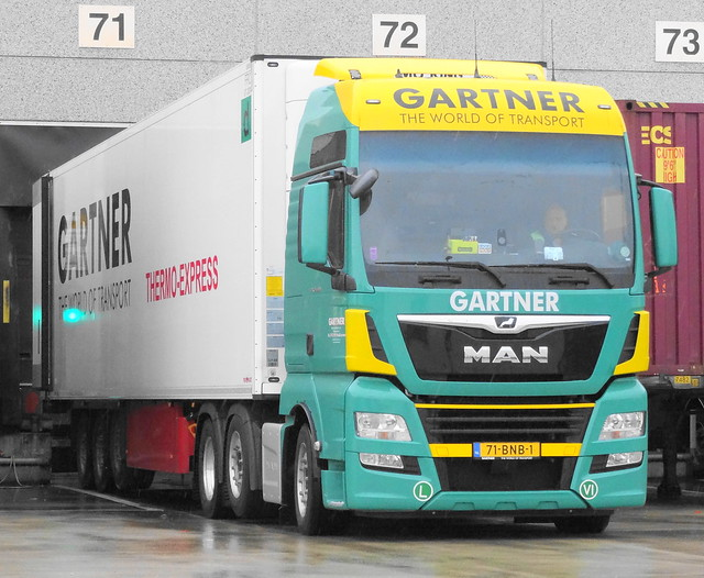 Man TGX26.500 Gartner, Waddinxveen