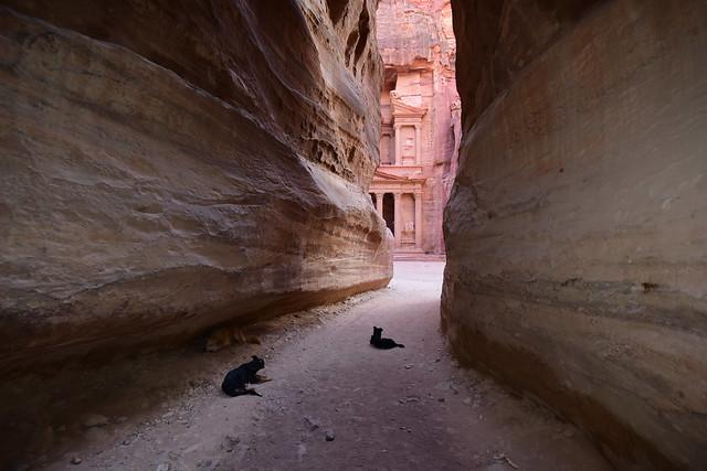 Petra, Jordan, June 2019 269