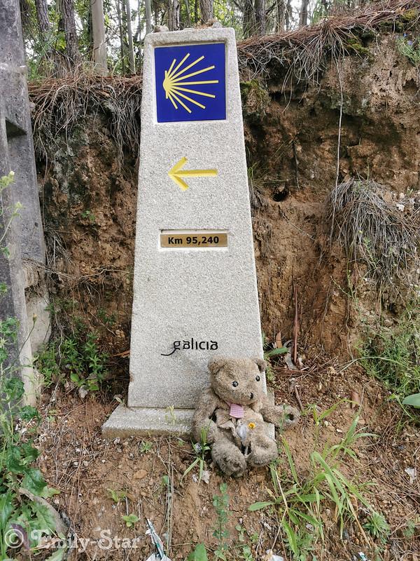 Camino Portugues - Tag 10-123242