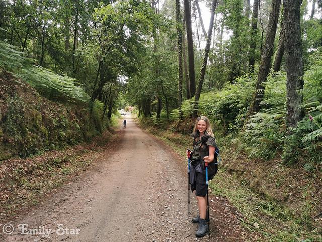 Camino Portugues - Tag 10-124457