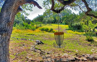 Hanging basket on hole 1 at the Flying Armadillo Disc Golf Club