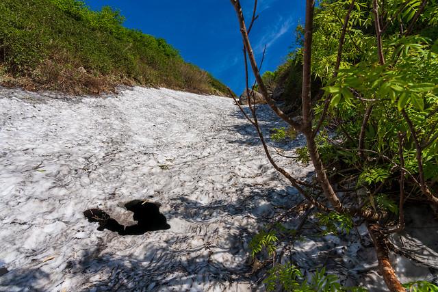 崩落しそうな雪渓の下から沢水の流れる音・・・木を掴んで慎重に・・・
