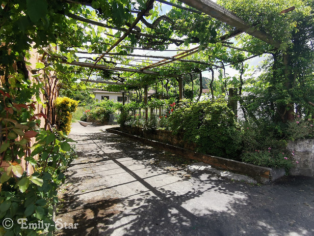 Camino Portugues - Tag 10-140704
