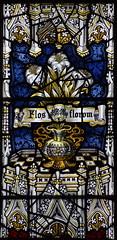 flos florum (Kempe & Co, 1904)