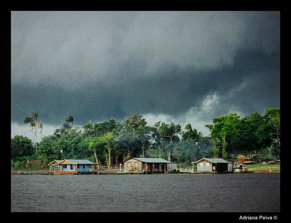 blog da jornalista Adriana Paiva encontro dos rios Negro e Solimões Rio Negro safári amazônico encontro das águas parque ecológico Amazonas Porto de Manaus do Porto da Ceasa rainforest ecological park