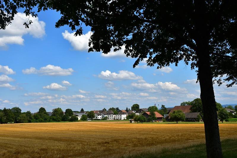 Landscapes Feldbrunnen 14.07 (1)