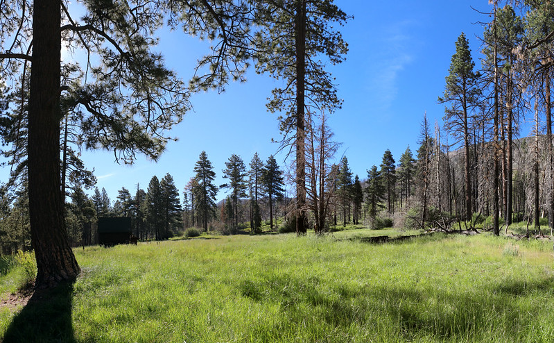 Horse Meadow and its historic buildings were saved from the fire back in 2015
