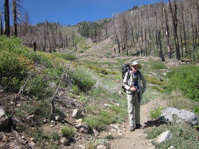The South Fork Trail crossed an avalanche path that led up toward Alto Diablo Peak