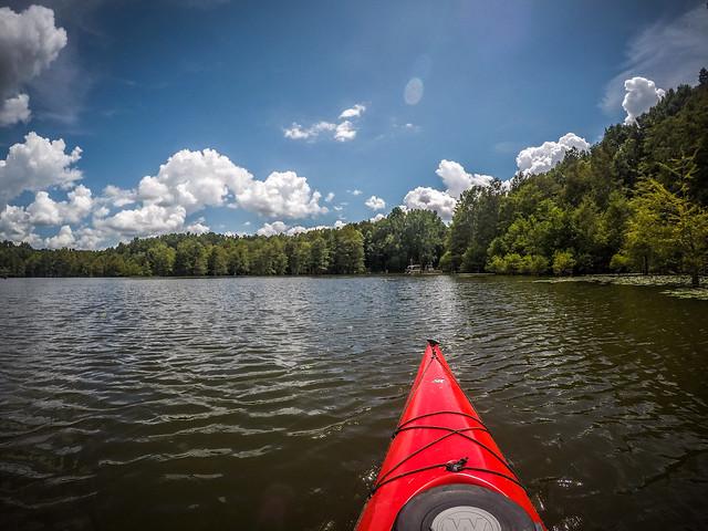 Lake Marion - Ferguson-233