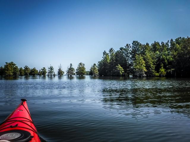 Lake Marion - Ferguson-14