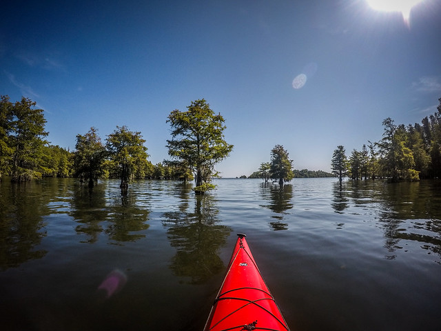 Lake Marion - Ferguson-11