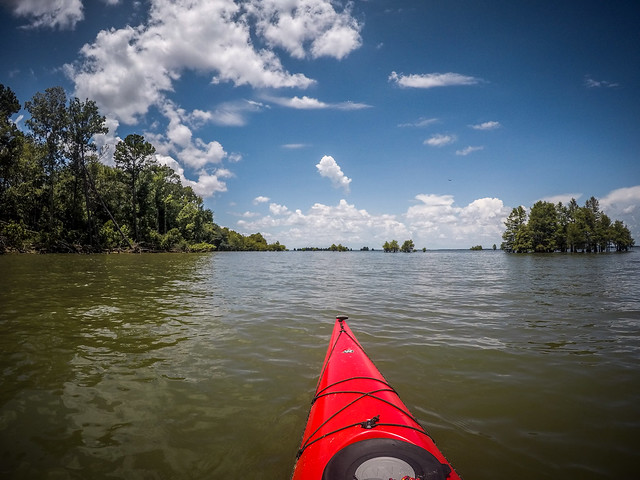 Lake Marion - Ferguson-137