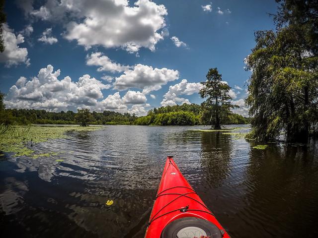 Lake Marion - Ferguson-146
