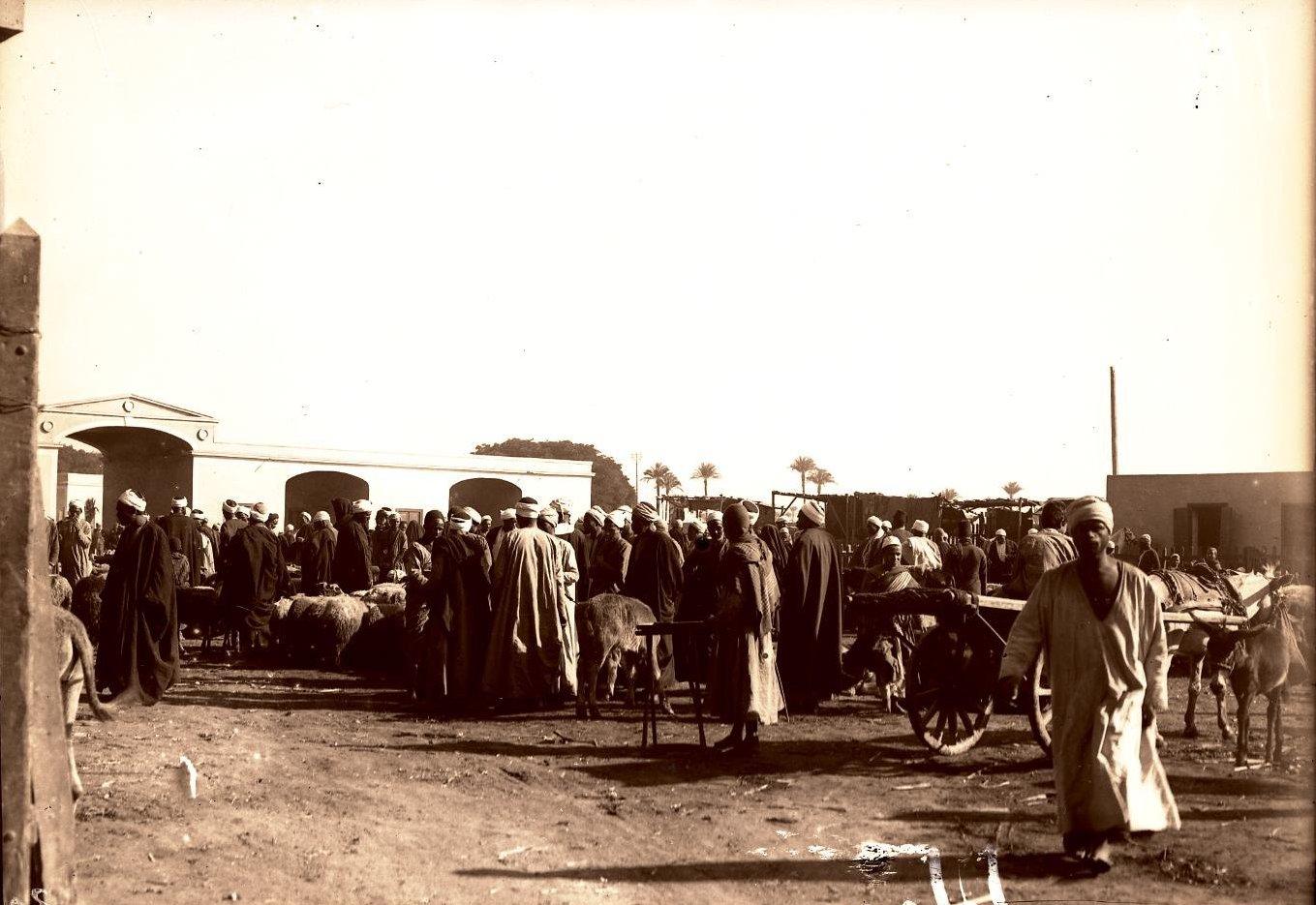 16. Египет. Каир. Базар