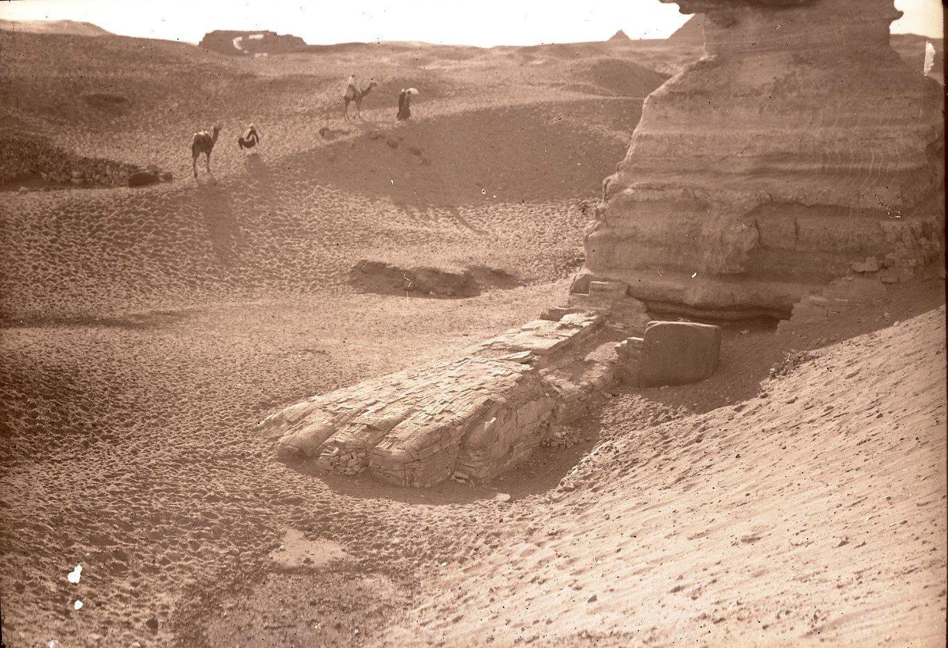 23. Египет. Гиза. Лапа сфинкса