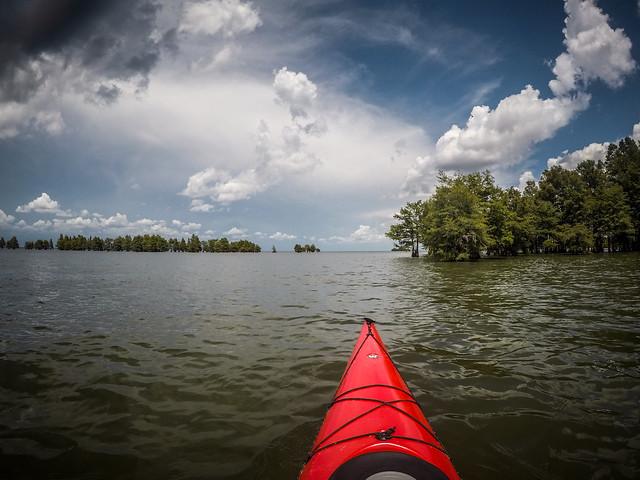 Lake Marion - Ferguson-216