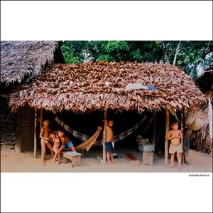 Urihi Terra-floresta casa povos originários maloca Yanomami taba aldeia povo indígena índios ianomâmis Fotos por Adriana Paiva