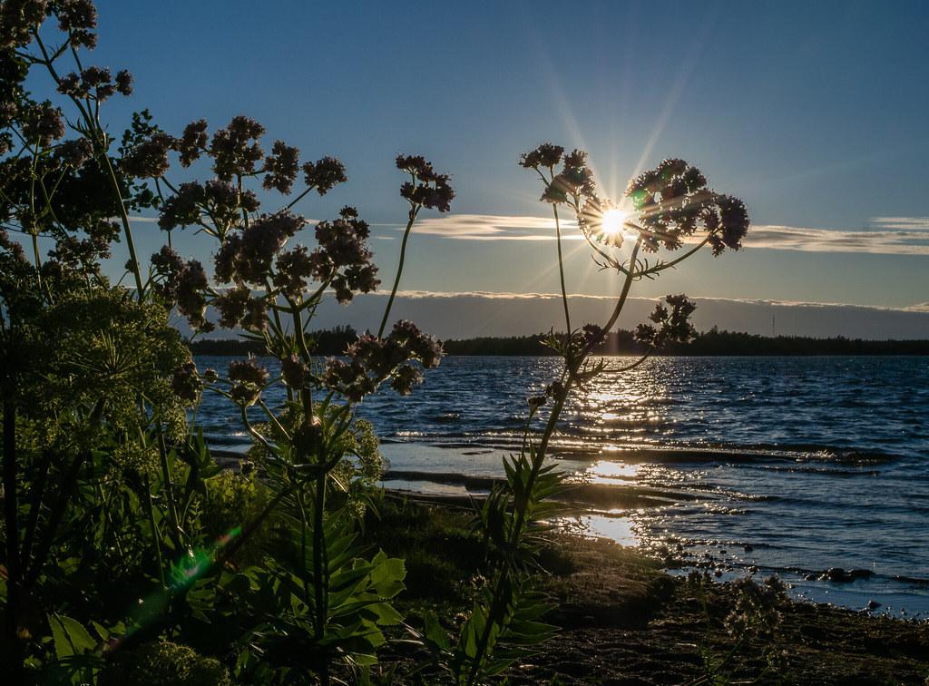 Saaressa-Espoossa-Gåsgrund