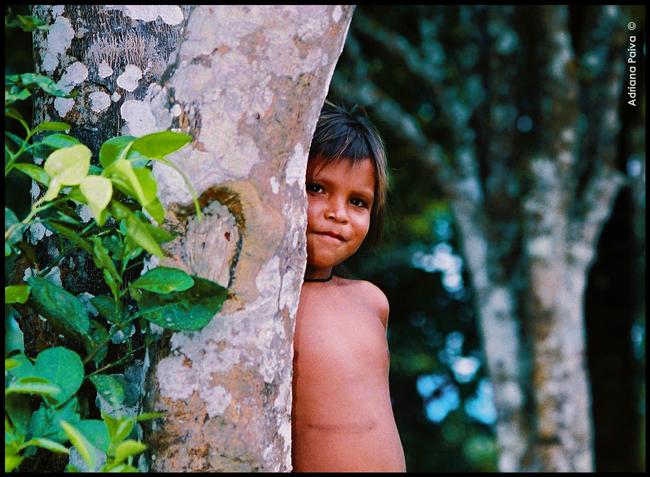 Reserva indígena crianças meninas ianomâmis arquitetura construção ianomâmi construções típicas aldeia aldeias Pico da Neblina Maturacá Ayrca Região Alto Rio Negro ICMBio fronteira Brasil Venezuela floresta