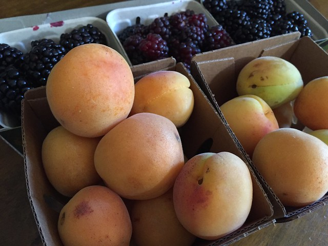 Blenheim apricots, Boisen berries, and Black berries