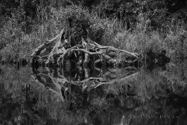 Reflection at the Edge