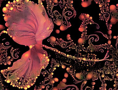 Glow Flower