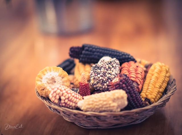 Color of Corns