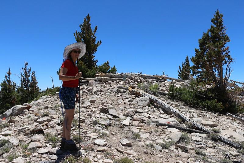 The summit of Ten Thousand Foot Ridge (Peak 10094) and the register box