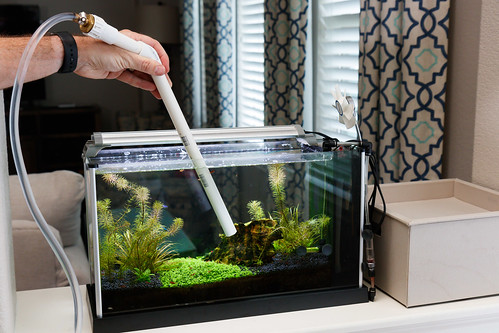 use pump and pvc fittings for aquarium water change