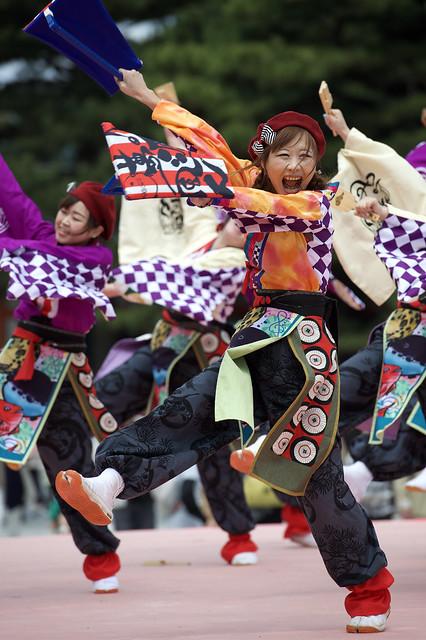 Kyoto Sakura Yosakoi 21