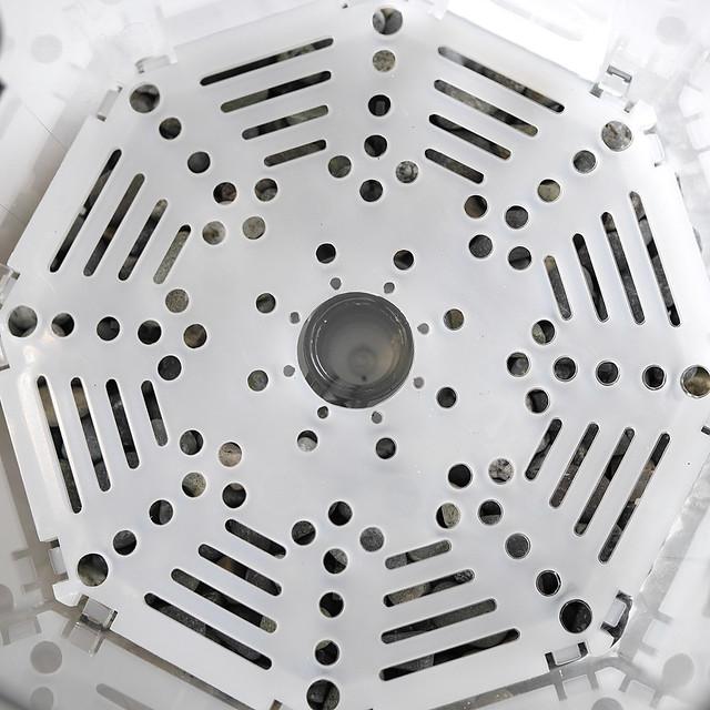 水作 投げ込みフィルター 水作エイト コア 違い カスタマイズ フィルター