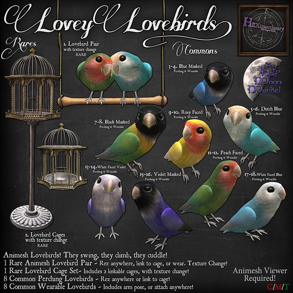 Lovey Lovebirds Gacha Key