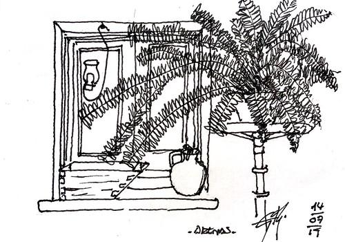 Window with plant.