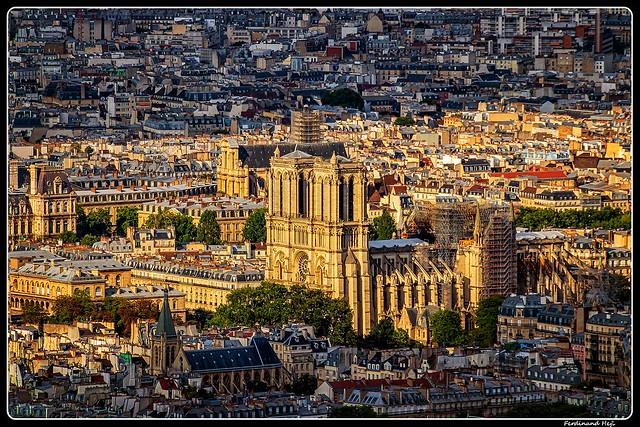 Paris_Cathédrale Notre-Dame_4e arrondissement de Paris
