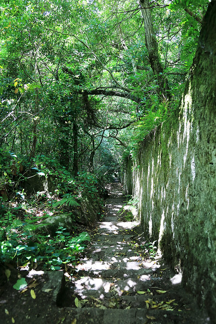 Approaching Vila Sassetti