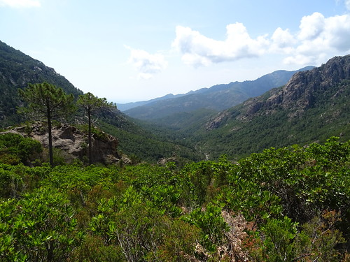 Descente du chemin de Paliri après les travaux : la  vallée de la Figa Bona