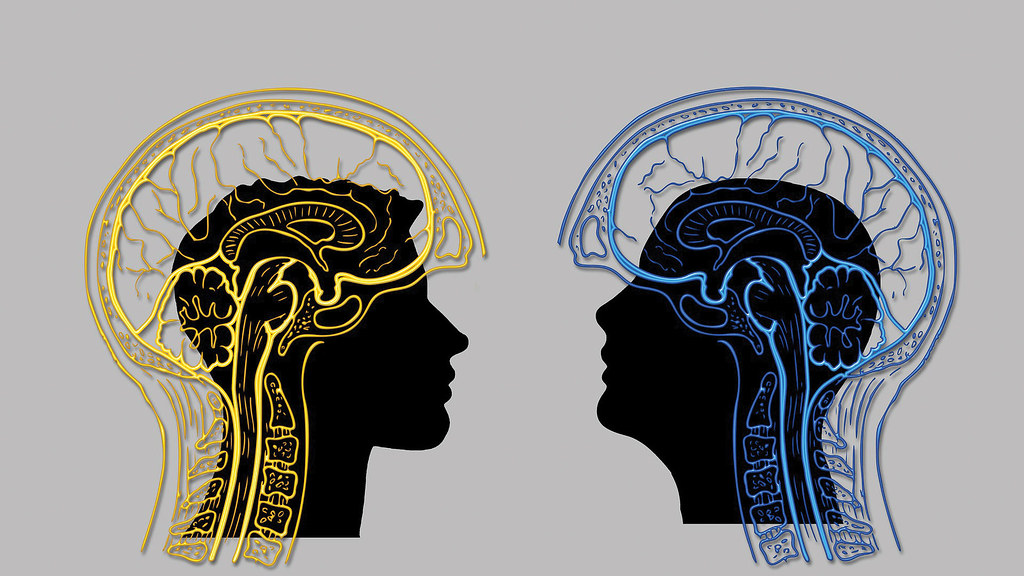 Two head silhouettes facing each other with brain graphic overlaid