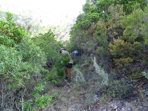 Travaux à l'approche de Punta Russa