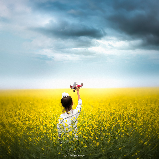 2 miles from the Canadian border in Montana, we drove through beautiful Canola Fields....miles and miles of yellow flowers...so we had to stop and take some pictures. I had my son's wooden plane along; this is one of the pictures I captured....