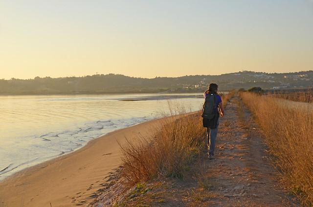 Alvor wetlands, Algarve
