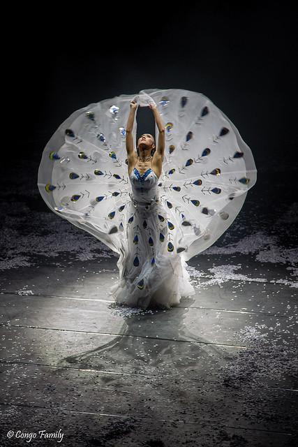 Dynamic Yunnan : Yang Liping for the Peacock Dance