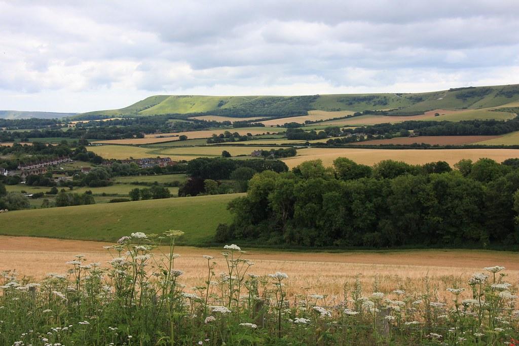 Lewes to Berwick 14.7.19 SWC4