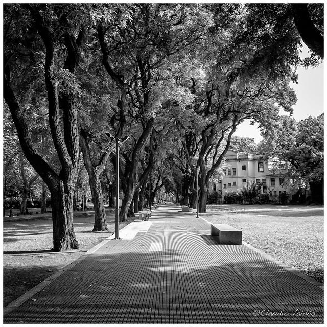 A Pleasant Walk Home